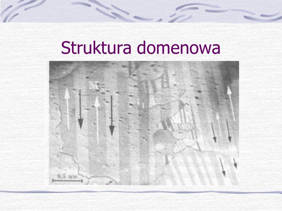 Struktura domenowa