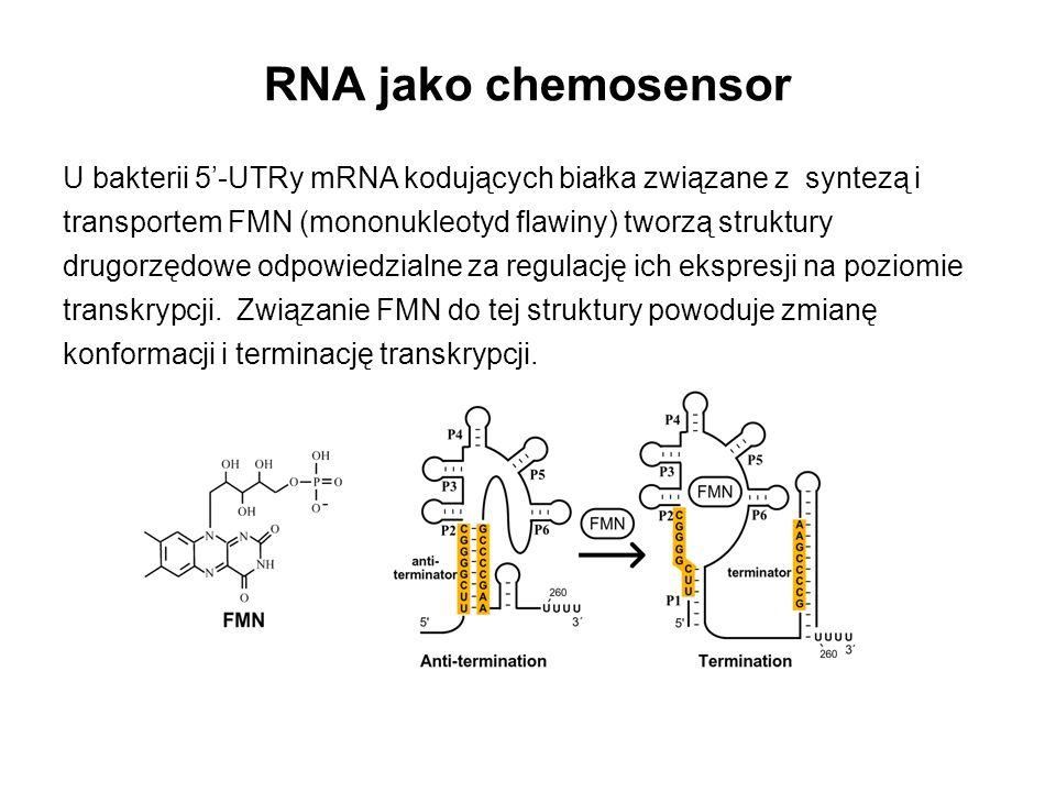 RNA jako chemosensor