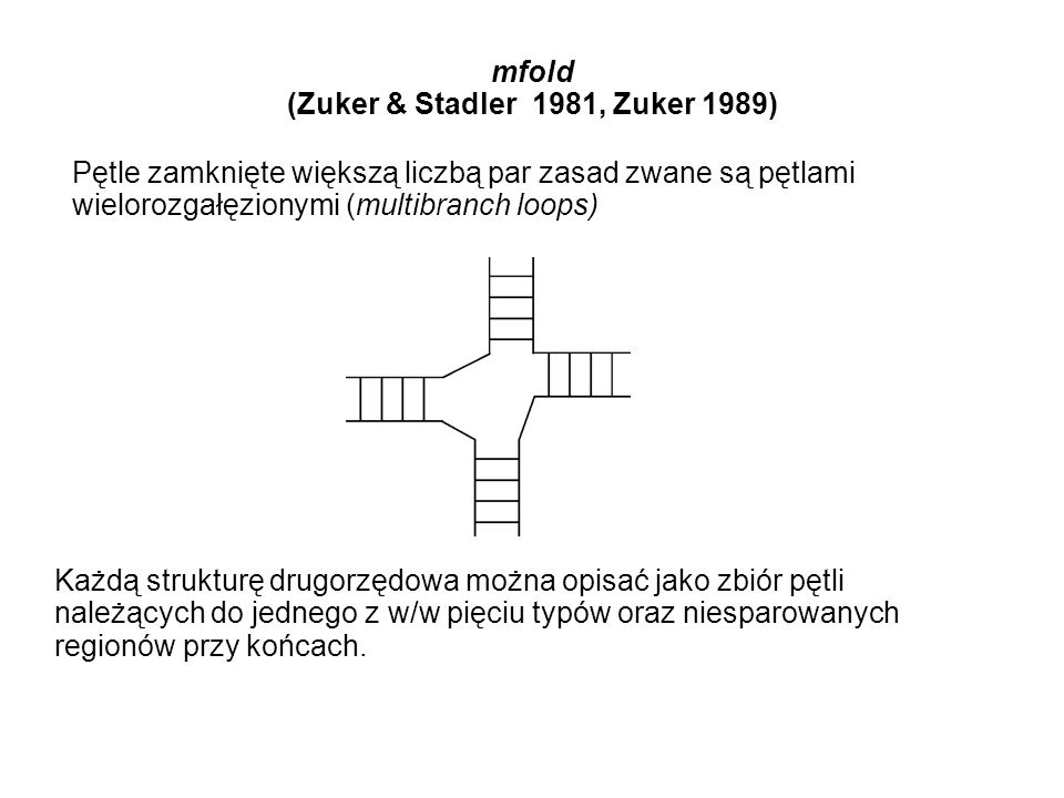mfold (Zuker & Stadler 1981, Zuker 1989)