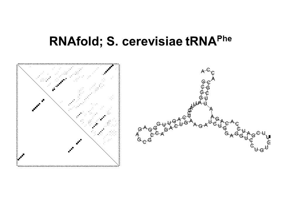 RNAfold; S. cerevisiae tRNAPhe