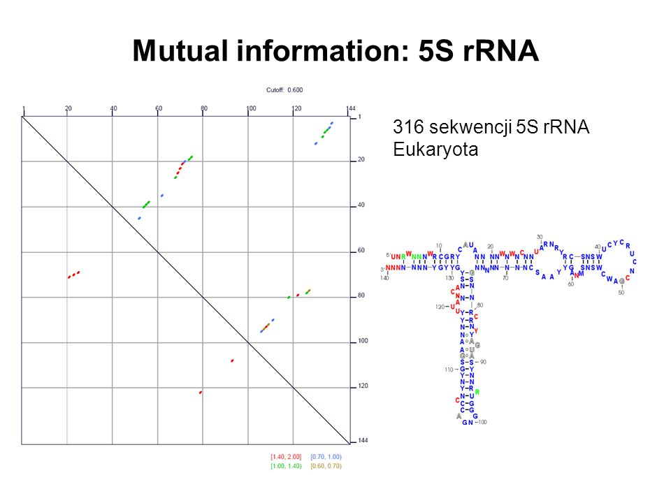 Mutual information: 5S rRNA