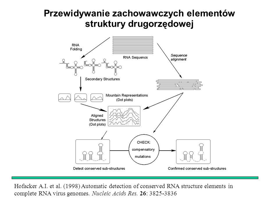 Przewidywanie zachowawczych elementów struktury drugorzędowej