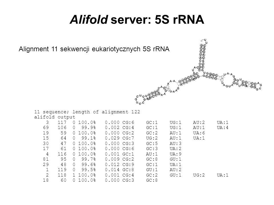 Alifold server: 5S rRNA Alignment 11 sekwencji eukariotycznych 5S rRNA
