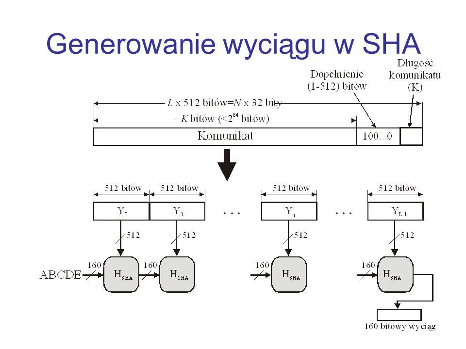 Generowanie wyciągu w SHA