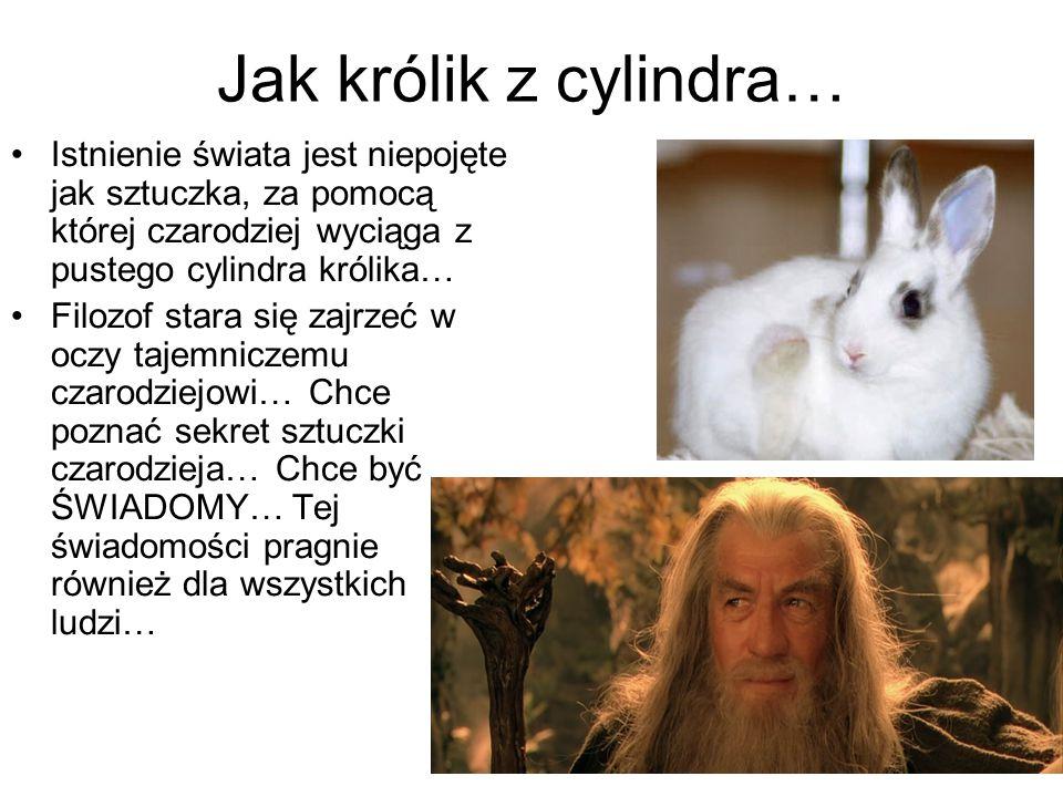 Jak królik z cylindra… Istnienie świata jest niepojęte jak sztuczka, za pomocą której czarodziej wyciąga z pustego cylindra królika…