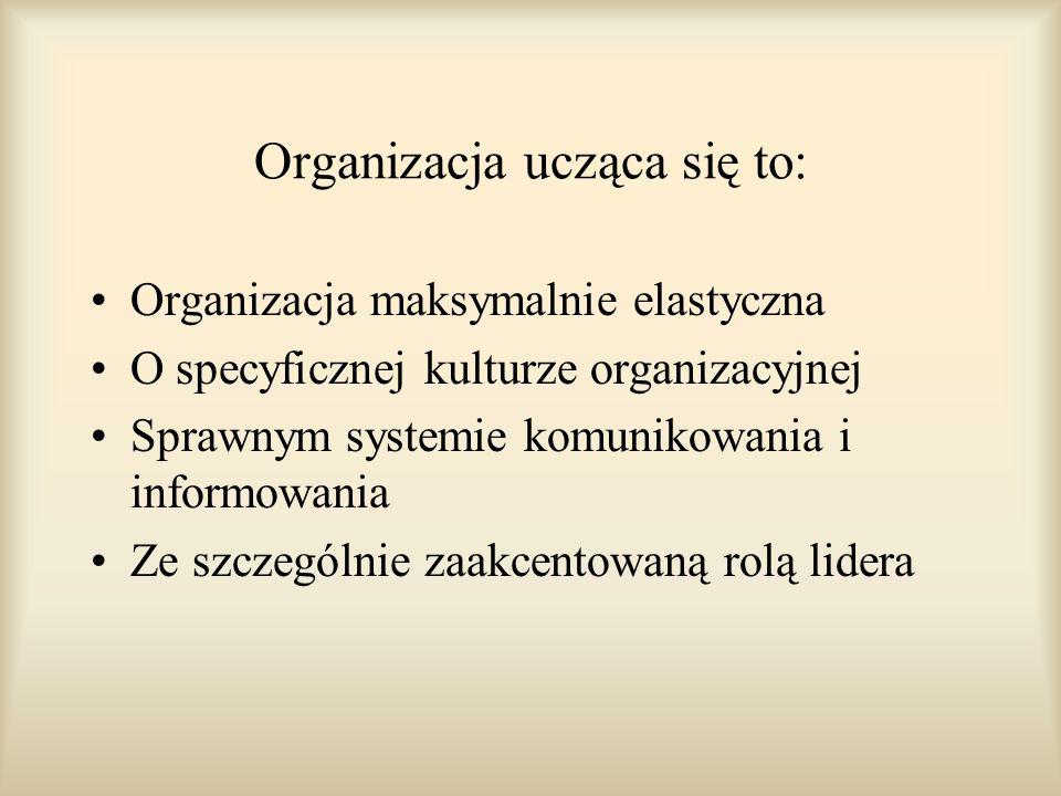 Organizacja ucząca się to:
