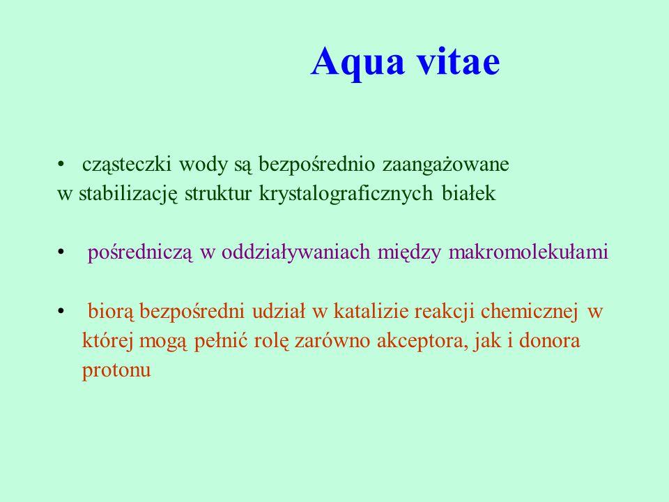 Aqua vitae cząsteczki wody są bezpośrednio zaangażowane