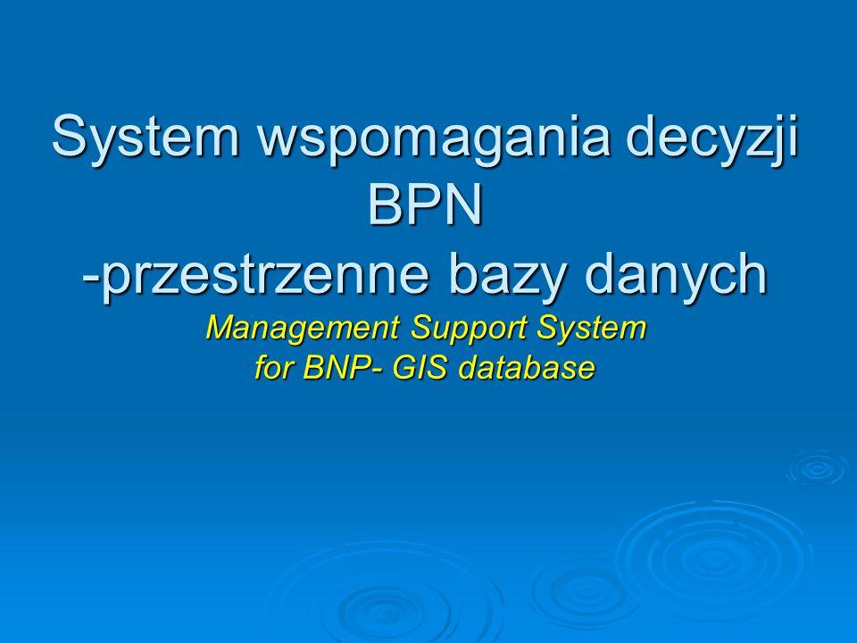 System wspomagania decyzji BPN -przestrzenne bazy danych Management Support System for BNP- GIS database