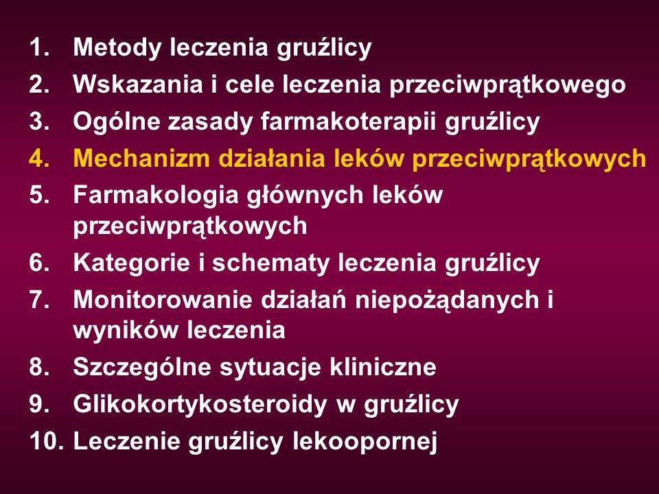 Metody leczenia gruźlicy
