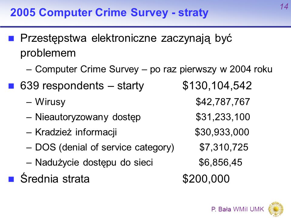 2005 Computer Crime Survey - straty