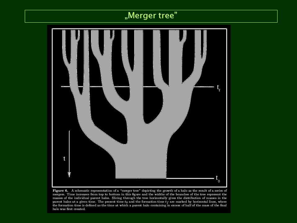 """Merger tree"