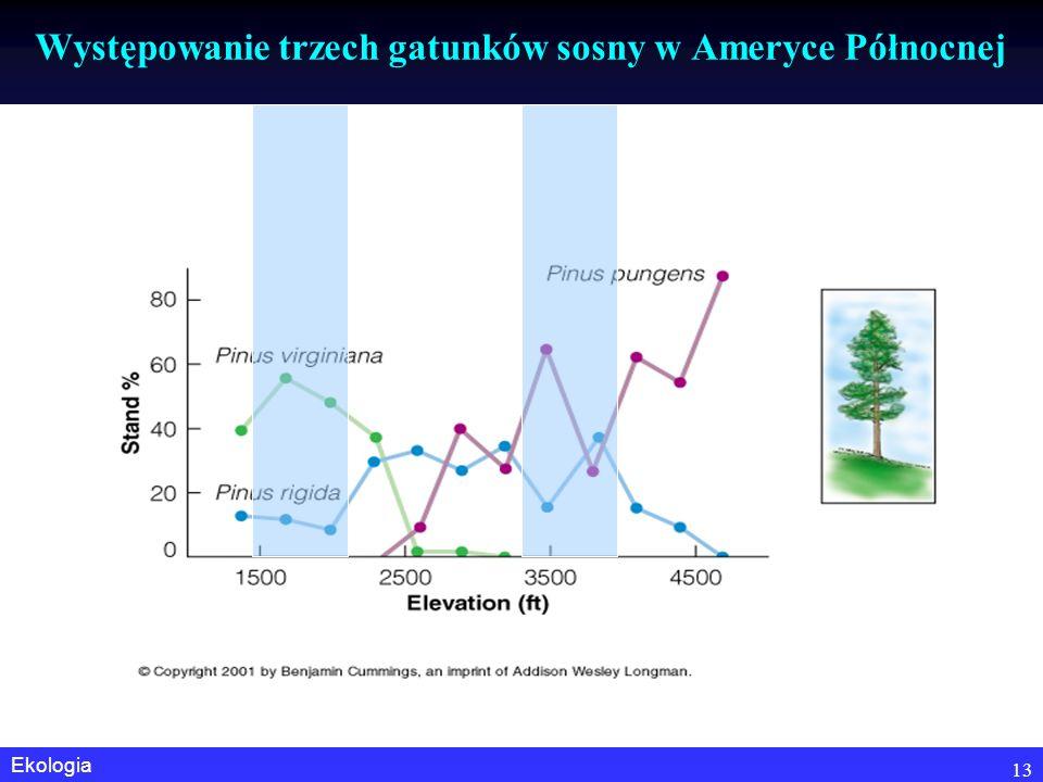 Występowanie trzech gatunków sosny w Ameryce Północnej
