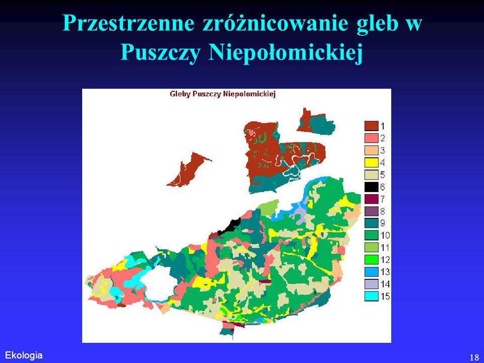 Przestrzenne zróżnicowanie gleb w Puszczy Niepołomickiej