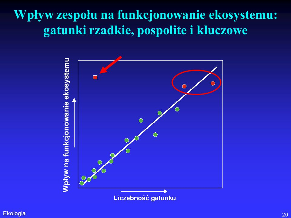 Wpływ zespołu na funkcjonowanie ekosystemu: gatunki rzadkie, pospolite i kluczowe