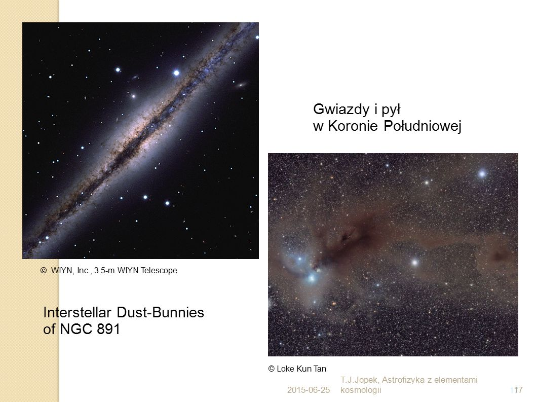 Interstellar Dust-Bunnies of NGC 891