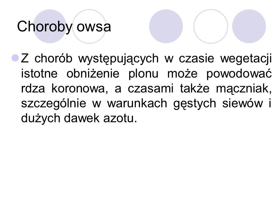Choroby owsa