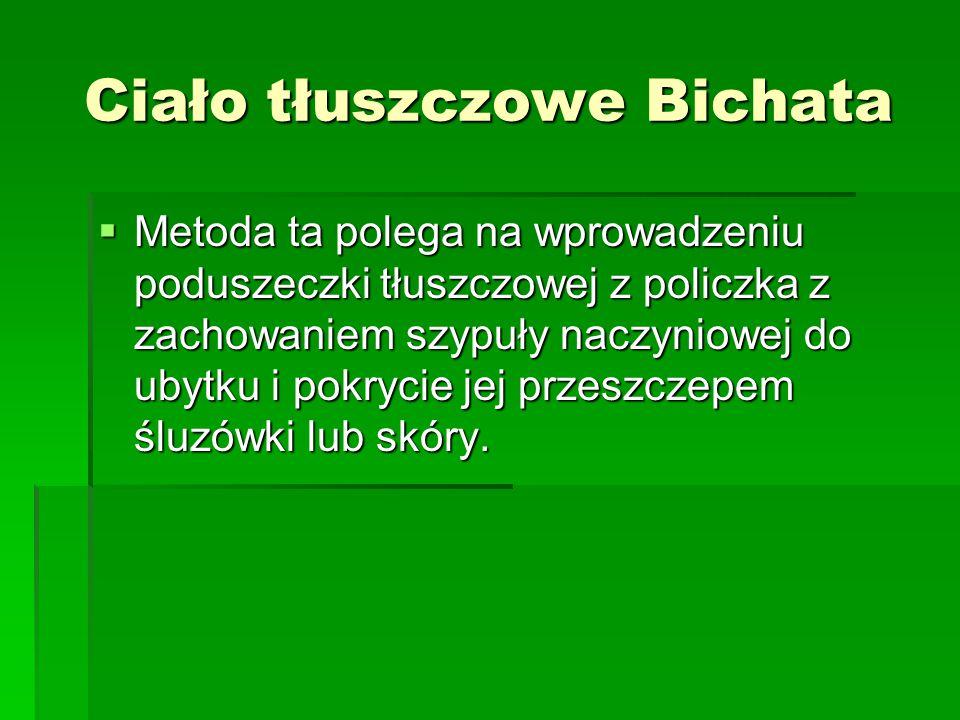 Ciało tłuszczowe Bichata