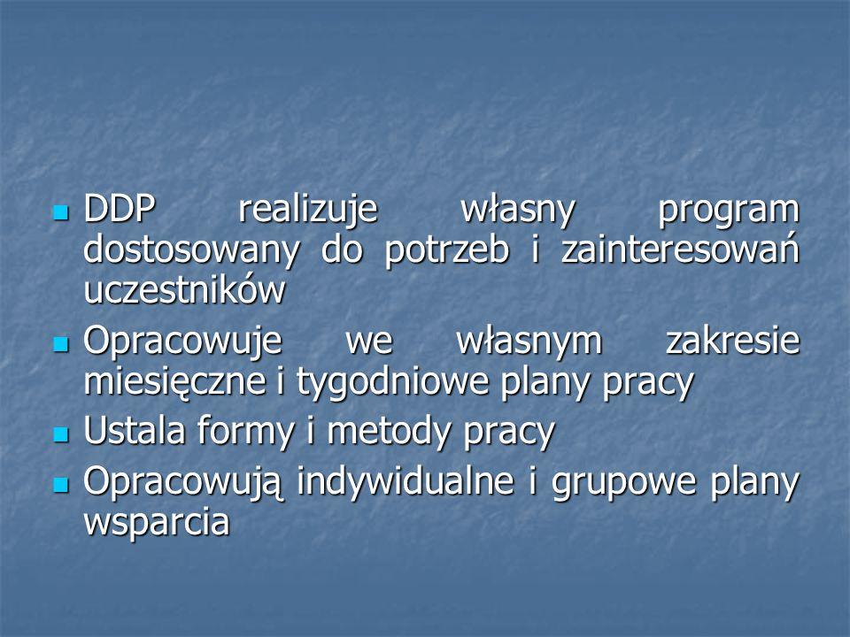 DDP realizuje własny program dostosowany do potrzeb i zainteresowań uczestników