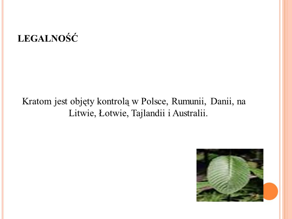 LEGALNOŚĆ Kratom jest objęty kontrolą w Polsce, Rumunii, Danii, na Litwie, Łotwie, Tajlandii i Australii.