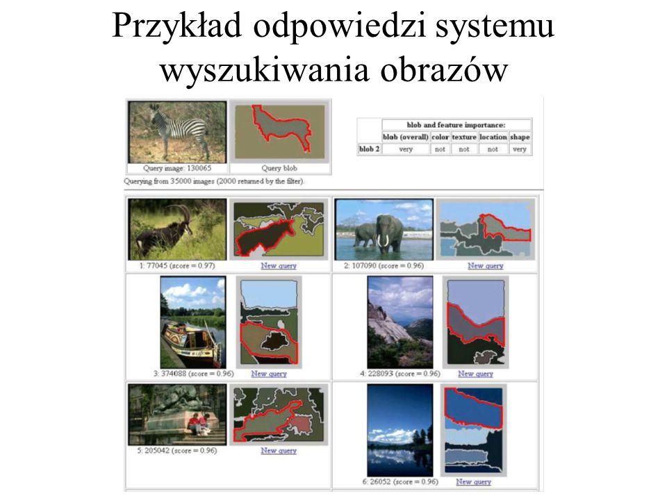 Przykład odpowiedzi systemu wyszukiwania obrazów