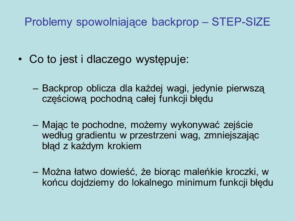 Problemy spowolniające backprop – STEP-SIZE