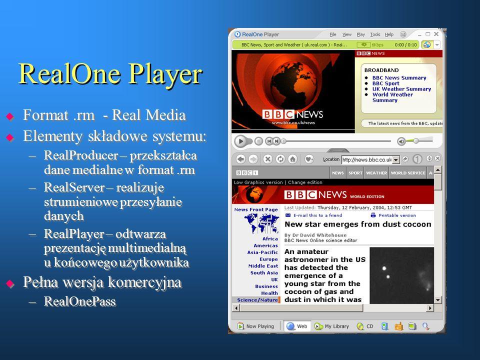 RealOne Player Format .rm - Real Media Elementy składowe systemu: