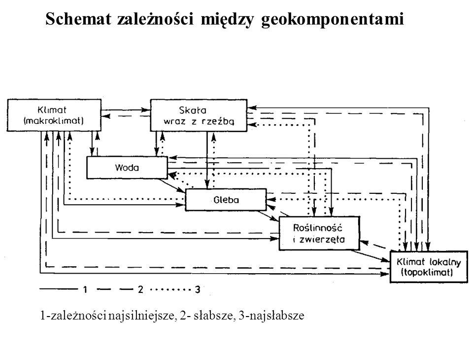 Schemat zależności między geokomponentami