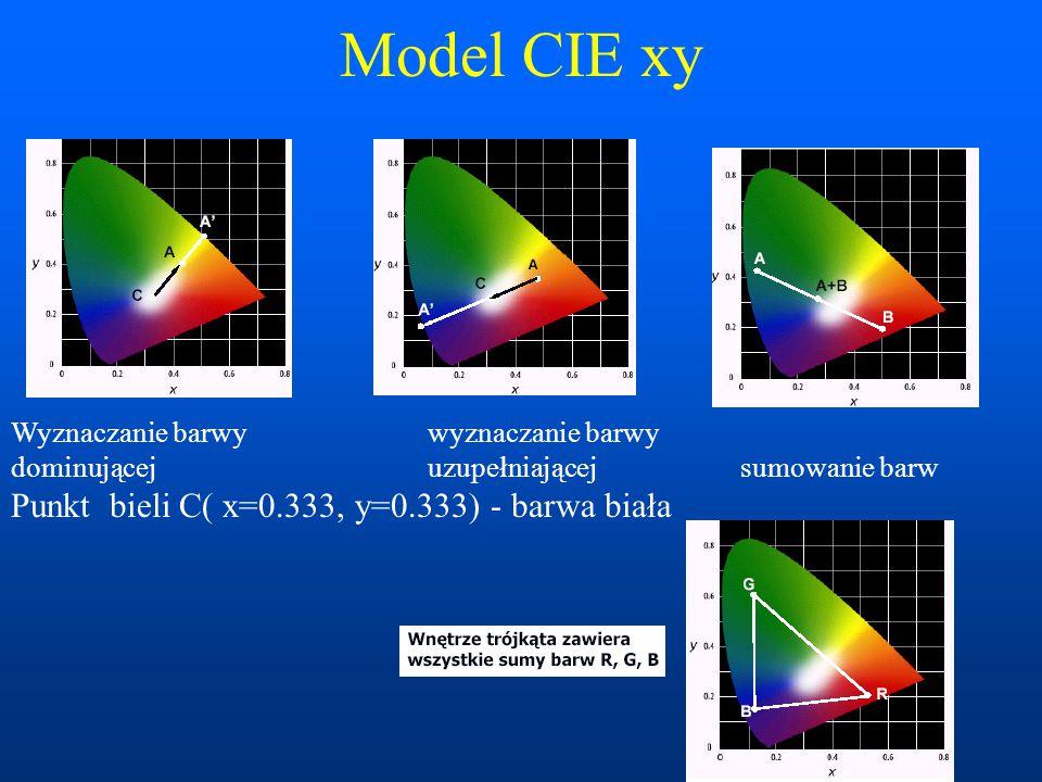 Model CIE xy Punkt bieli C( x=0.333, y=0.333) - barwa biała