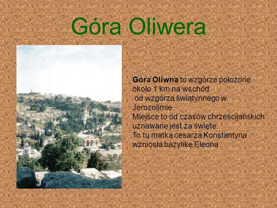 Góra Oliwera Góra Oliwna to wzgórze położone około 1 km na wschód