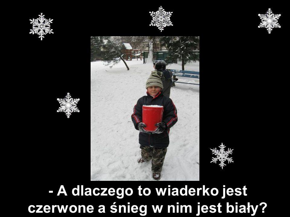 - A dlaczego to wiaderko jest czerwone a śnieg w nim jest biały
