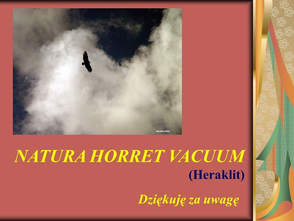 NATURA HORRET VACUUM (Heraklit) Dziękuję za uwagę