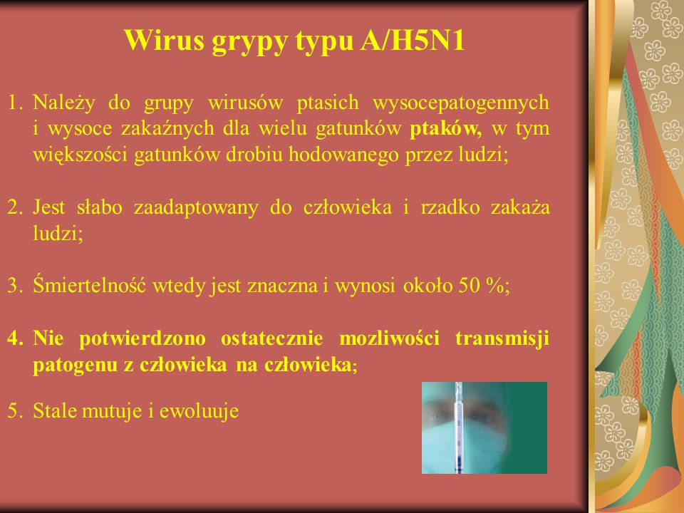 Wirus grypy typu A/H5N1