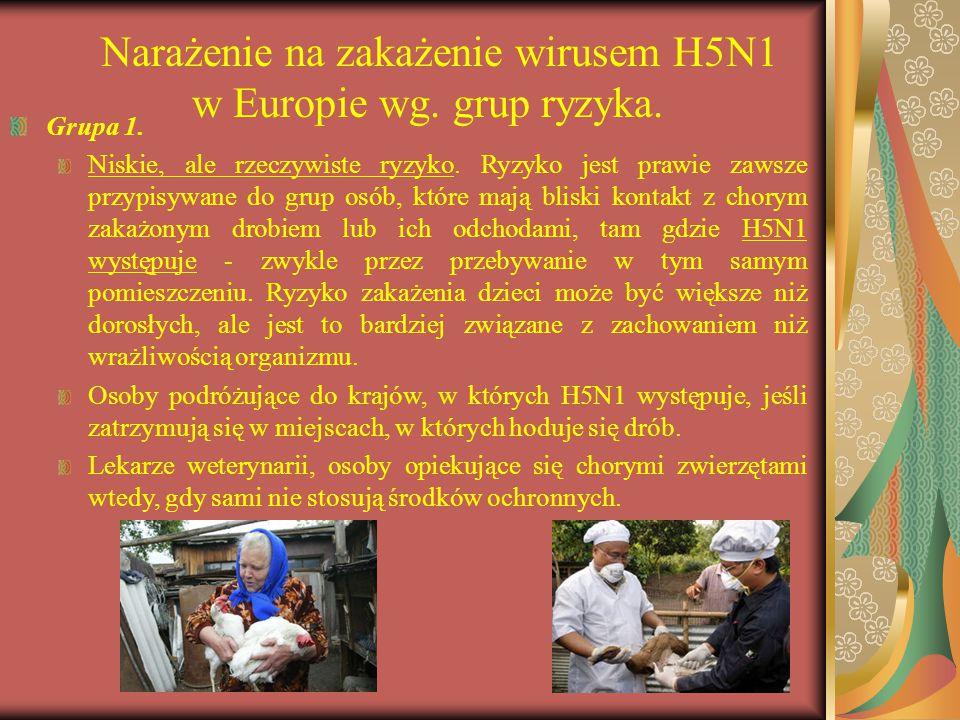 Narażenie na zakażenie wirusem H5N1 w Europie wg. grup ryzyka.
