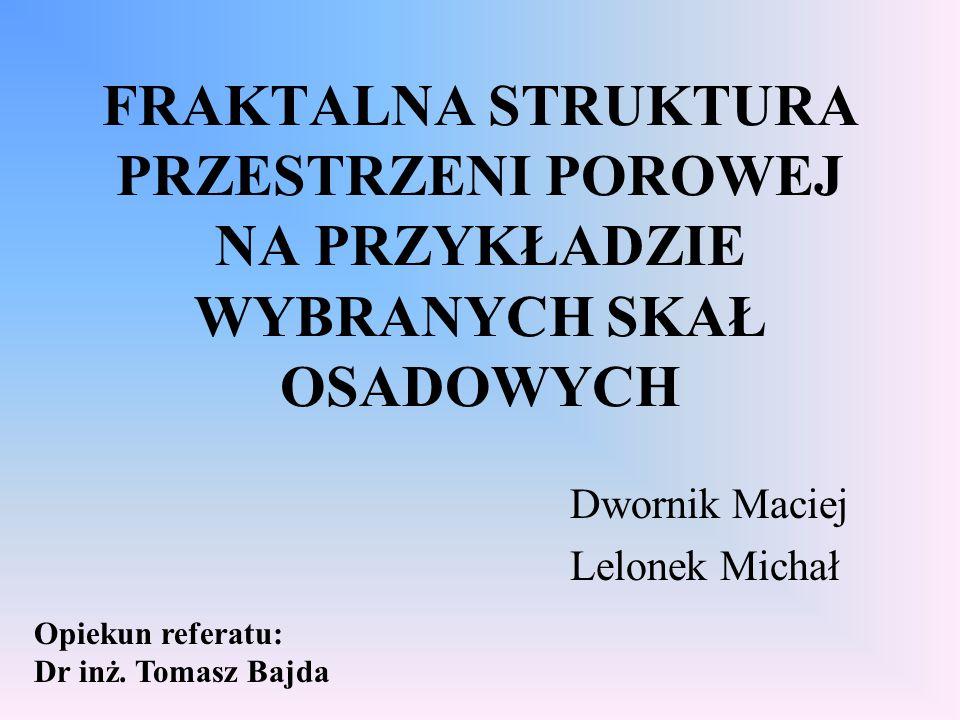 Dwornik Maciej Lelonek Michał