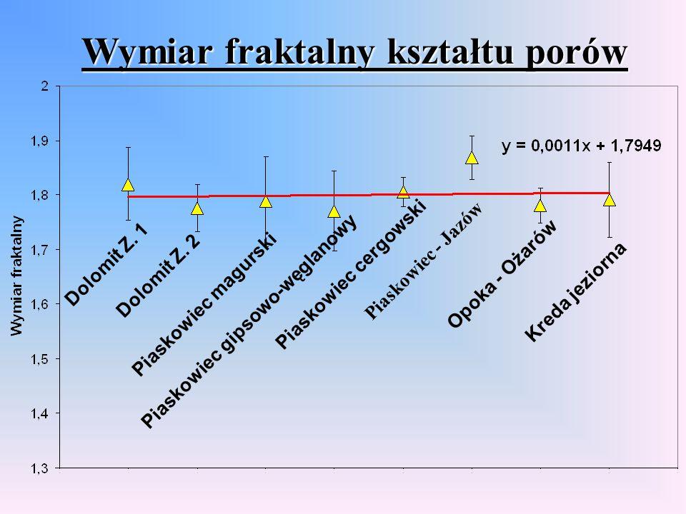 Wymiar fraktalny kształtu porów