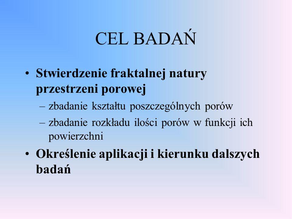 CEL BADAŃ Stwierdzenie fraktalnej natury przestrzeni porowej