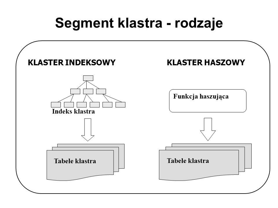 Segment klastra - rodzaje
