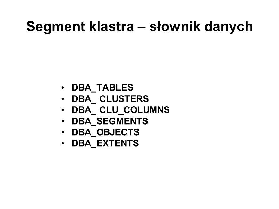 Segment klastra – słownik danych