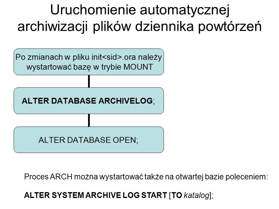 Uruchomienie automatycznej archiwizacji plików dziennika powtórzeń