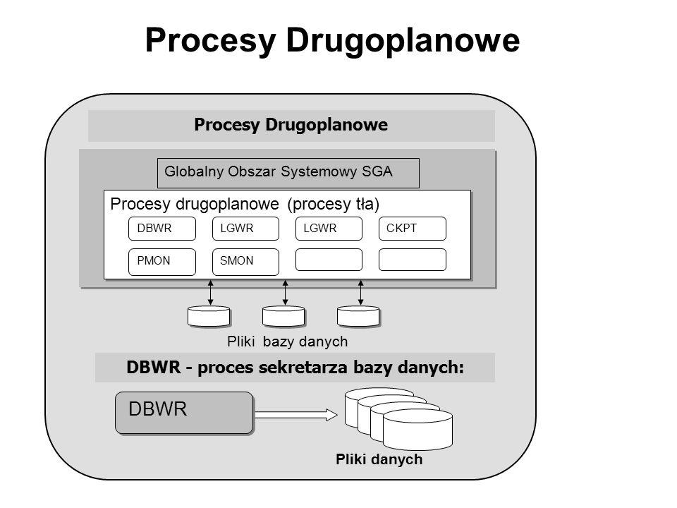 DBWR - proces sekretarza bazy danych: