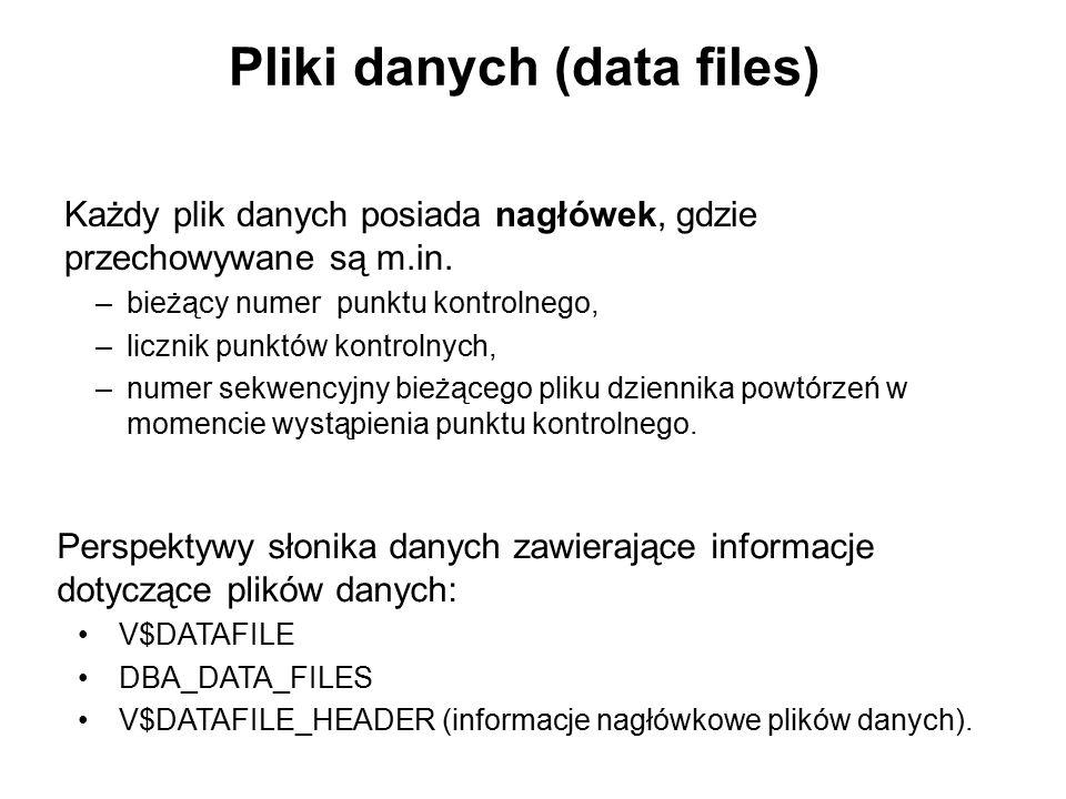 Pliki danych (data files)