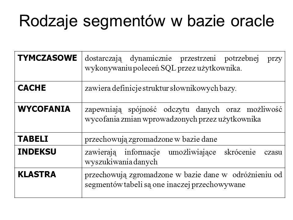 Rodzaje segmentów w bazie oracle
