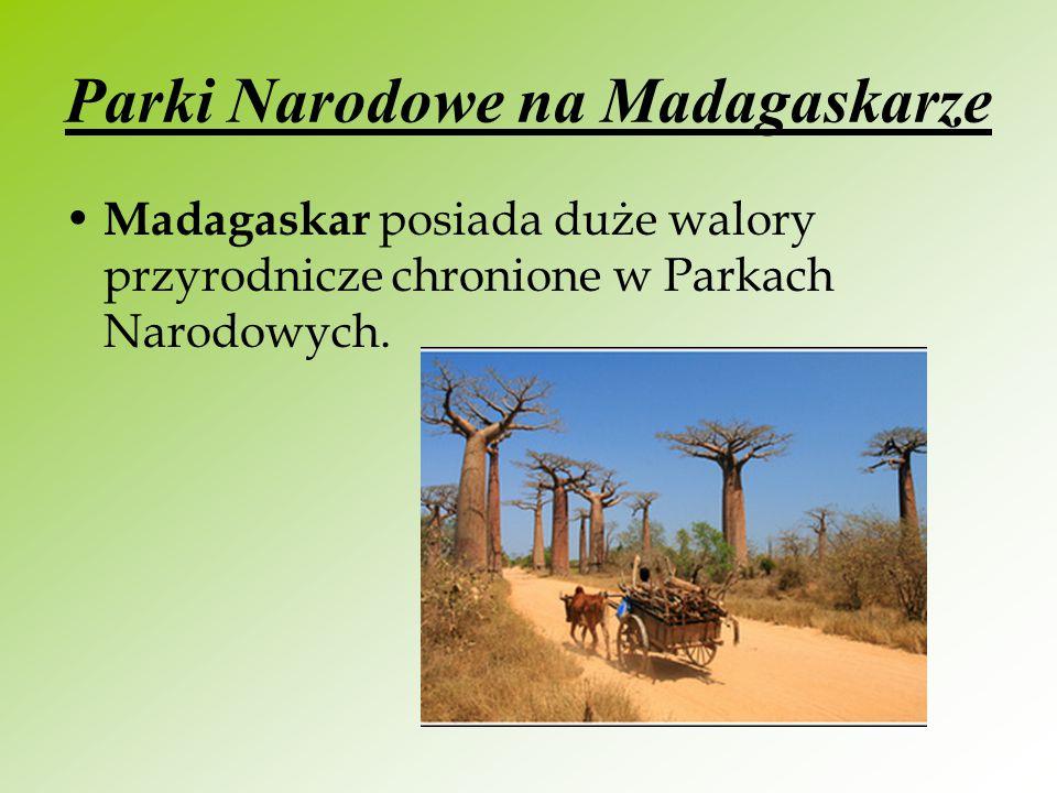 Parki Narodowe na Madagaskarze