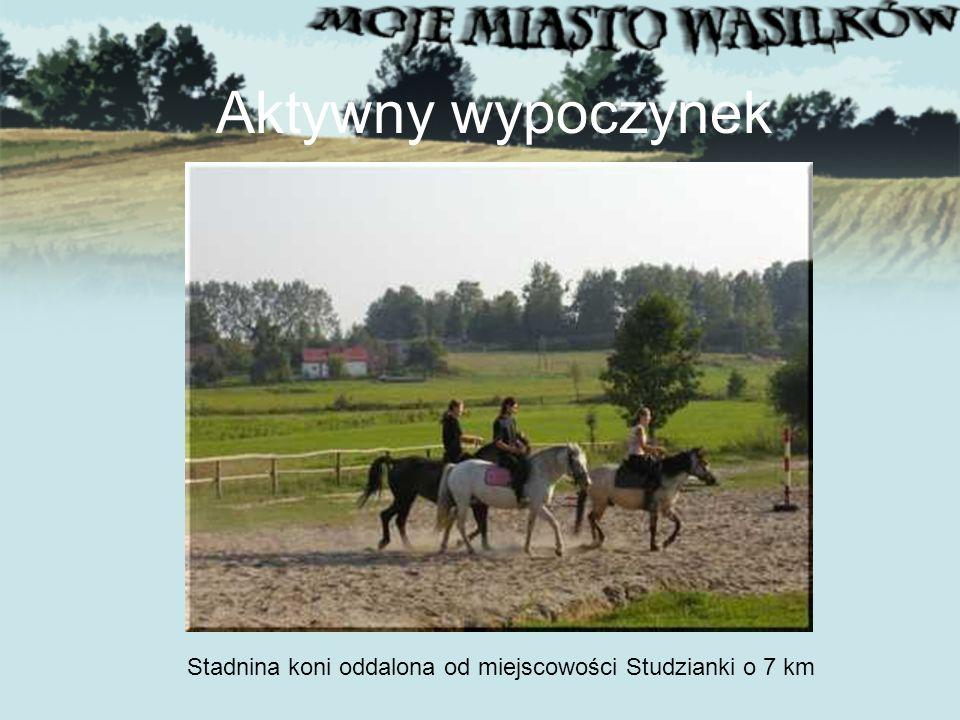 Aktywny wypoczynek Stadnina koni oddalona od miejscowości Studzianki o 7 km