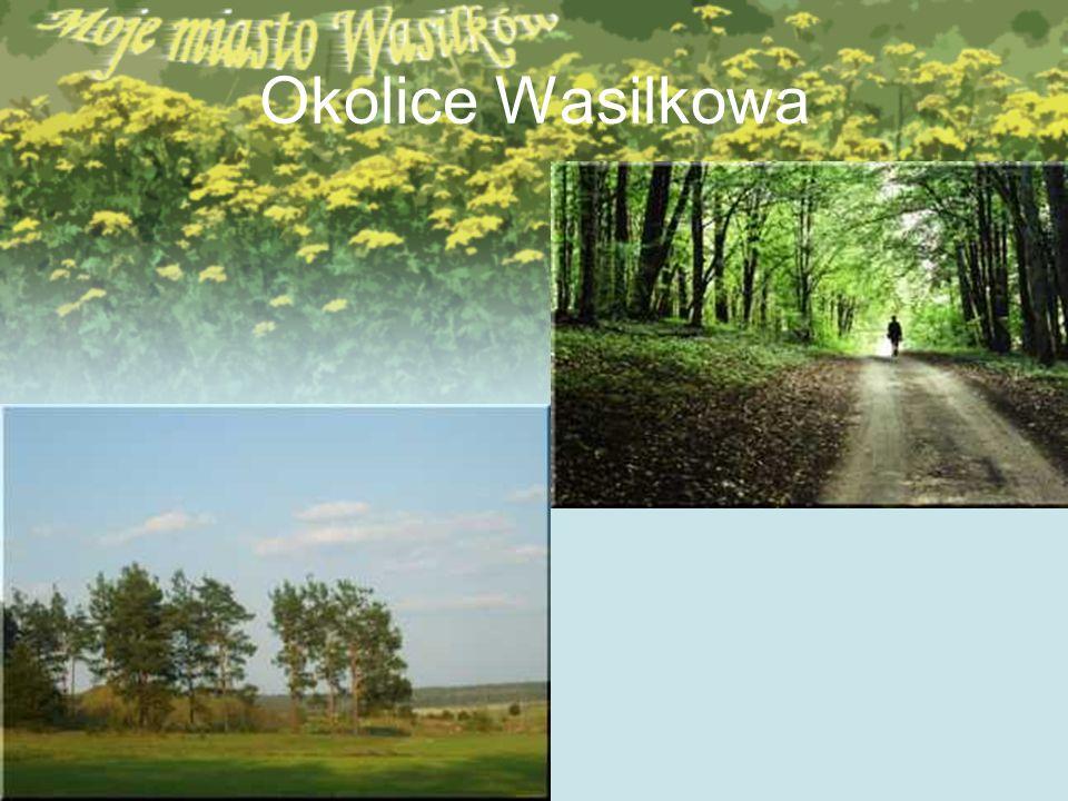 Okolice Wasilkowa