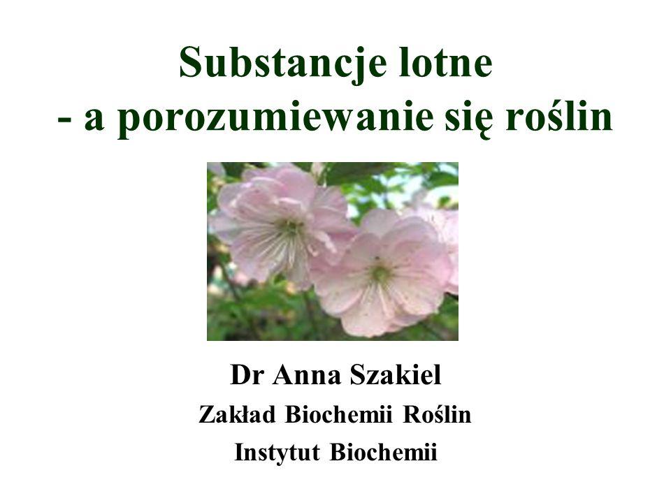 Substancje lotne - a porozumiewanie się roślin