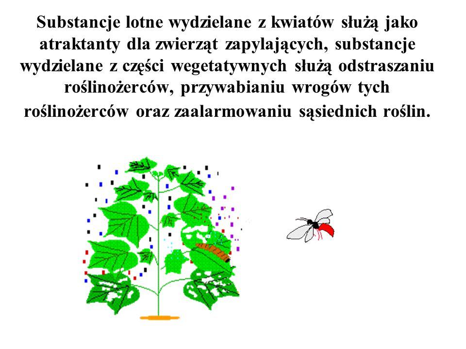 Substancje lotne wydzielane z kwiatów służą jako atraktanty dla zwierząt zapylających, substancje wydzielane z części wegetatywnych służą odstraszaniu roślinożerców, przywabianiu wrogów tych roślinożerców oraz zaalarmowaniu sąsiednich roślin.