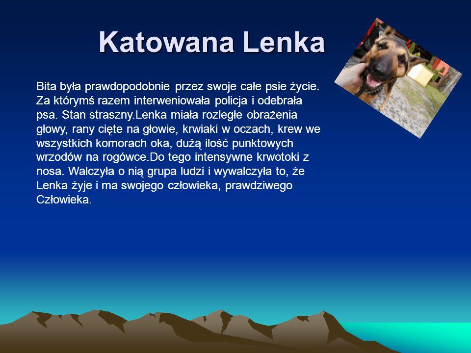 Katowana Lenka
