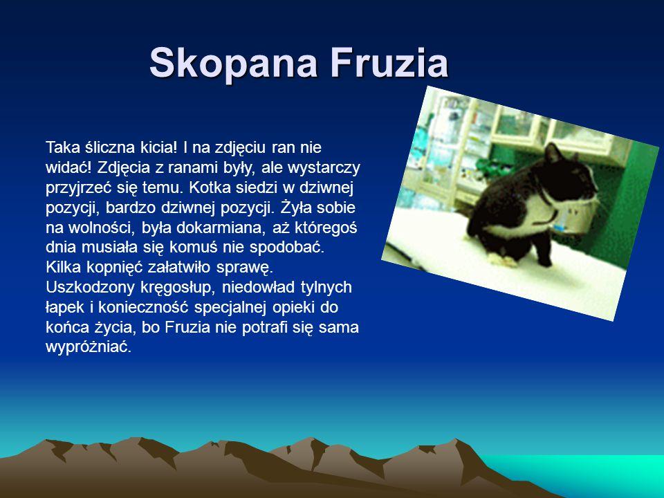 Skopana Fruzia