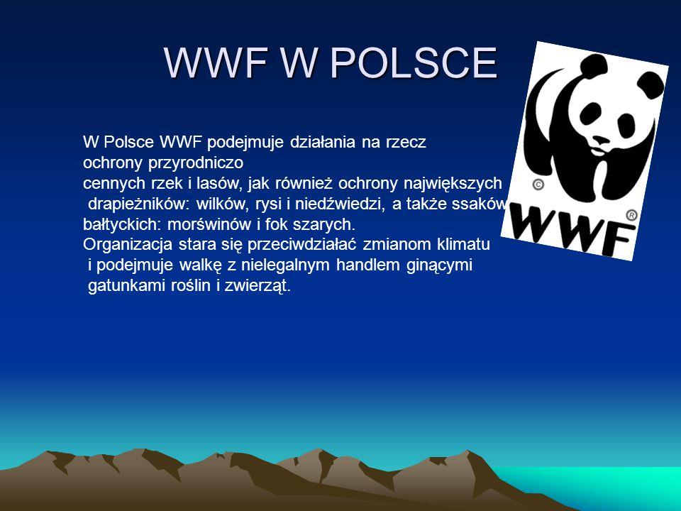 WWF W POLSCE W Polsce WWF podejmuje działania na rzecz